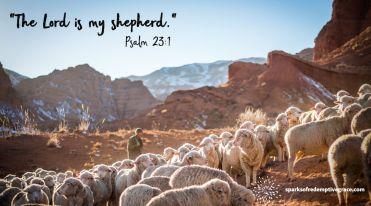 Psalm 23-1 - 2