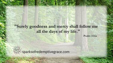 Psalm 23-6a 2